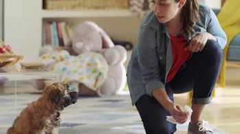 Lysol Max Cover TV Spot, 'You're Lucky You're Cute'