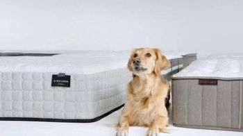 Macys Veterans Day Sale TV Spot Queen Mattress Sets And Free Delivery