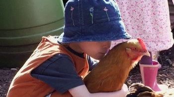 Nellie's Free Range Eggs TV Spot, 'Hens Are Friends' Song by Bob Dylan - Thumbnail 4