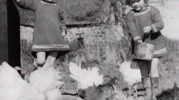 Nellie's Free Range Eggs TV Spot, 'Hens Are Friends' Song by Bob Dylan - Thumbnail 5