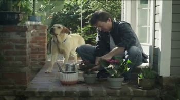 Southeastern Guide Dogs TV Spot, 'You Are Not Alone'