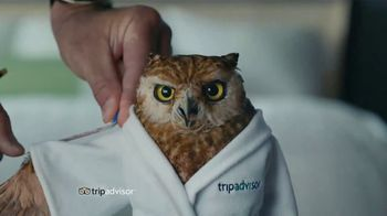 Trip Advisor TV Spot, 'A Price That Fits'