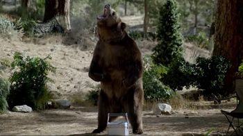 2017 Volkswagen Passat TV Spot, 'Bear Encounter' Song by Grouplove