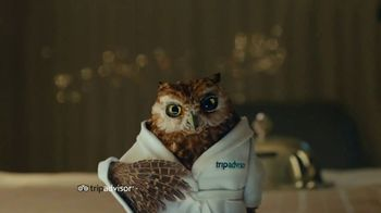 Trip Advisor TV Spot, 'This Bird's Words'