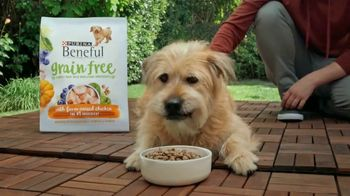 Purina Beneful Grain Free TV Spot, 'Súper alimentos' [Spanish] - Thumbnail 4