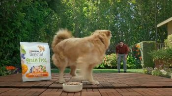 Purina Beneful Grain Free TV Spot, 'Súper alimentos' [Spanish] - Thumbnail 7