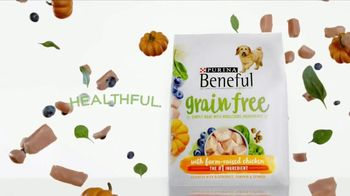 Purina Beneful Grain Free TV Spot, 'Superfoods' - Thumbnail 10