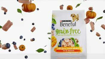 Purina Beneful Grain Free TV Spot, 'Superfoods' - Thumbnail 8