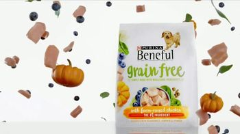 Purina Beneful Grain Free TV Spot, 'Superfoods' - Thumbnail 9