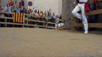 GEICO TV Spot, 'Running of the Bulldogs' - Thumbnail 8