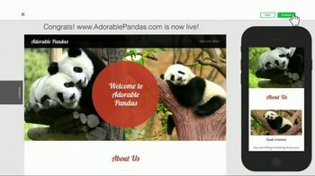 GoDaddy GoCentral TV Spot, 'Panda Breaks the Internet' - Thumbnail 7