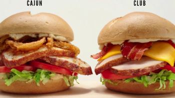Arby's Deep Fried Turkey TV Spot, 'Two Solid Options'