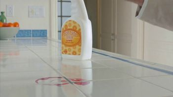 Clorox Cleaner + Bleach TV Spot, 'On Kitchen Stains' Featuring Nora Dunn